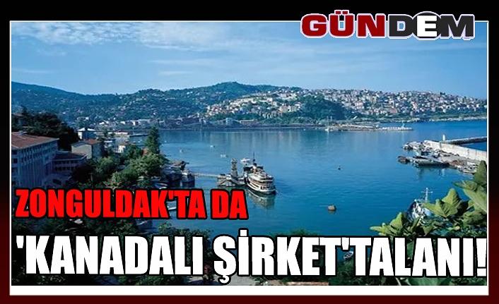 Zonguldak'ta da 'Kanadalı şirket' talanı!