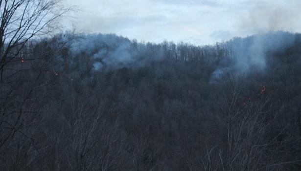 Orman yangınına güçlükle müdahale edildi