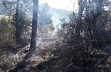 Düzce'de ormanlık alanda yangın