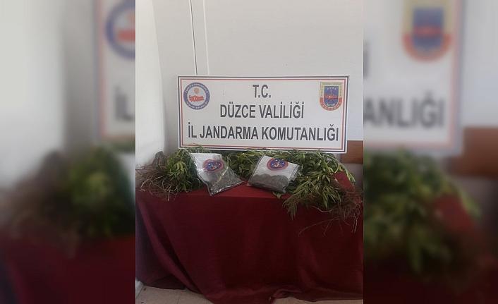 Jandarma'dan uyuşturucu operasyonu!..