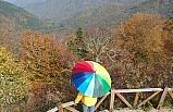 Bolu'nun orman çalışmasını Zonguldak yapıyor