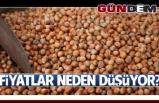 Bayraktar, fındık fiyatlarının neden düştüğünü açıkladı