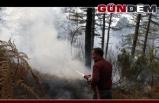 Zonguldak'ta orman yangını...