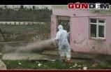 Belediye karantinaya alınan mahalleyi dezenfekte etti