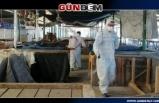 Pazaryeri yıkanarak dezenfekte edildi...