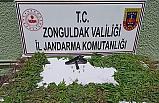 Jandarmadan Zehir operasyonu: 1 gözaltı