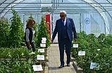 Kdz. Ereğli Belediyesi 12 çeşit üründe ata tohumu üretiyor
