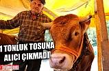 1 TONLUK TOSUNA ALICI ÇIKMADI