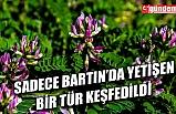 İSMİNE BARTIN GEVENİ VERİLDİ