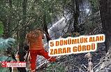 KARABÜK'TE ORMANLIK ALANDA YANGIN