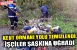 KENT ORMANI YOLU TEMİZLENDİ, İŞÇİLER ŞAŞKINA UĞRADI