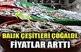 BALIK ÇEŞİTLERİ ÇOĞALDI, FİYATLAR ARTTI