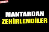 MANTARDAN ZEHİRLENDİLER