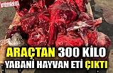 ARAÇTAN 300 KİLO YABANİ HAYVAN ETİ ÇIKTI