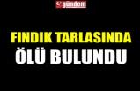 FINDIK TARLASINDA ÖLÜ BULUNDU