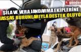 ŞİLA VE VERA JANDARMA EKİPLERİNE HASSAS BURUNLARIYLA DESTEK OLUYOR