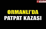 ORMANLI'DA PATPAT KAZASI