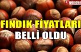 FINDIK FİYATLARI BELLİ OLDU