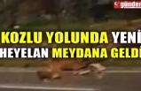 KOZLU YOLUNDA YENİ HEYELAN MEYDANA GELDİ