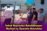 Sokak Hayvanları Rehabilitasyon  Merkezi'ne Ziyarette Bulundular