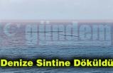 Denize Sintine Döküldü