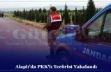 Alaplı'da PKK'lı Terörist Yakalandı