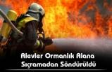 Kozlu'da  Orman Yangını İhbarı !