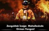 Zonguldak İnağzıMahallesinde  Orman Yangını!