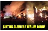 ÇİFTLİK ALEVLERE TESLİM OLDU!