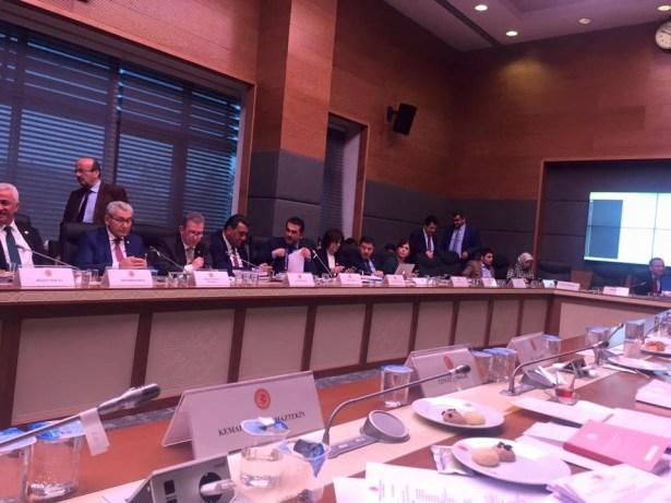 CHP Milletvekili Demirtaş Anayasa komisyonunda konuştu