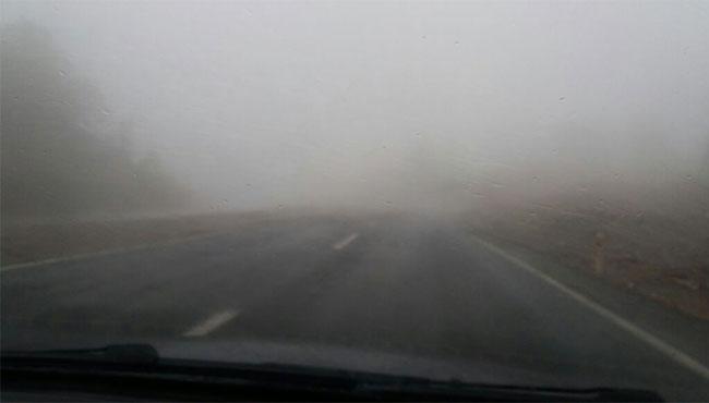 Dikkat! Yoğun sis var...