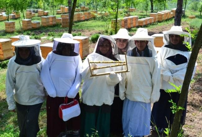 Arı sütü eğitimleri ile kadınları teşvik ediyor