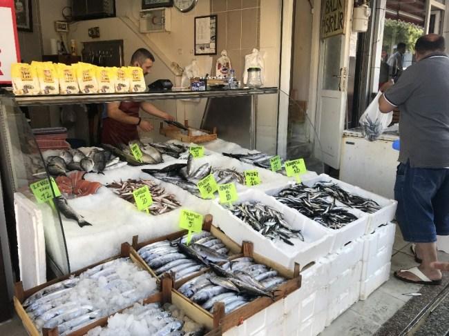 Balıkçılar istavrit balığı bolluğu yaşanıyor.