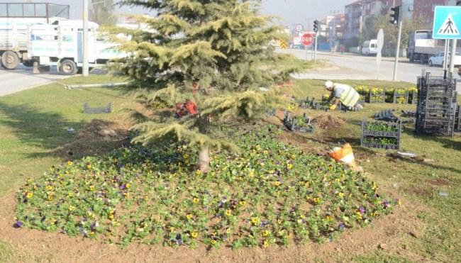 Belediye Tarafından Mevsimlik Çiçek Dikimi Başladı