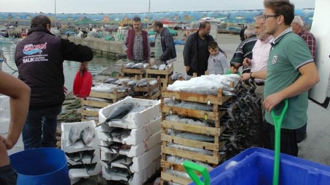 Balıkçıların torik bereketi