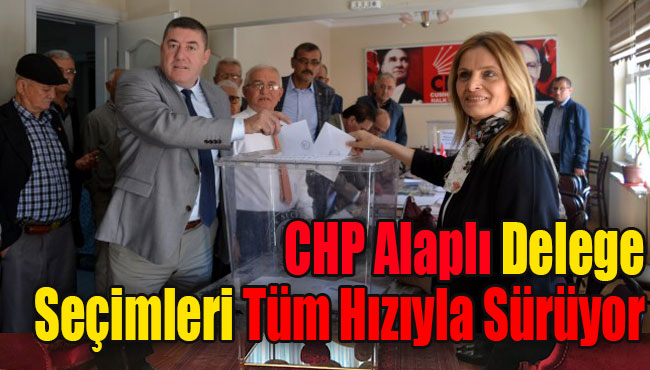 CHP Alaplı delege seçimleri tüm hızıyla sürüyor