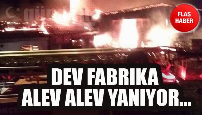 Dev fabrika alev alev yanıyor...
