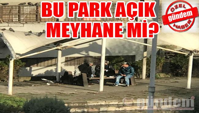 Bu park açık meyhane mi?