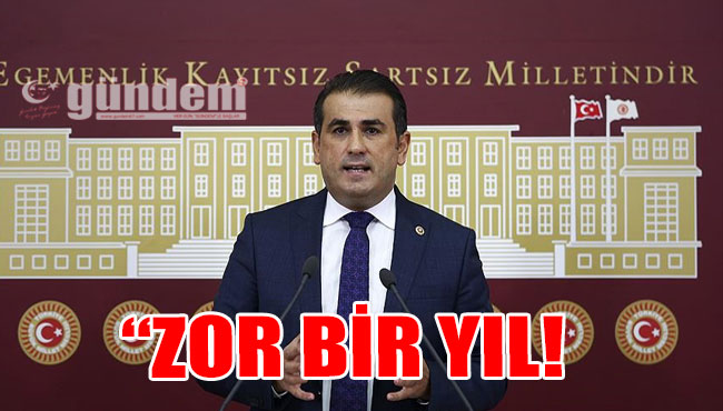 'ZOR BİR YIL!