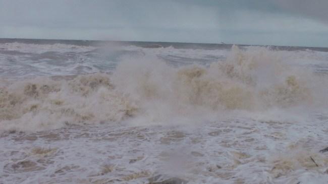 Batı Karadeniz'de fırtına...