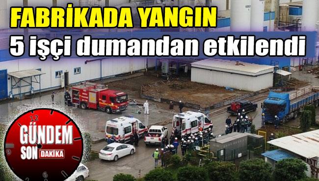 Demir Celik Fabrikasi Haberleri Zonguldak Haber Ve Kdz