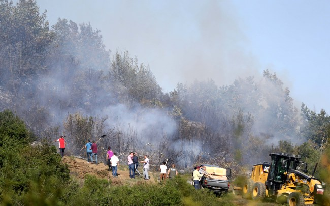 Yığılca ilçesinde 1 hektarlık alanda orman yangını