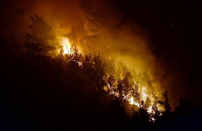 Pirinçlik mevkisinde ormaN Yangını!