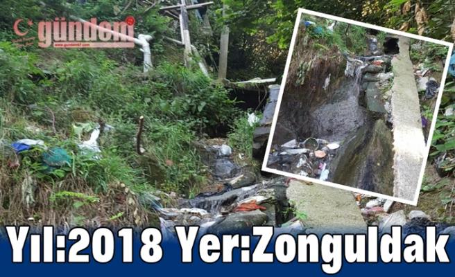 Yıl:2018 Yer:Zonguldak