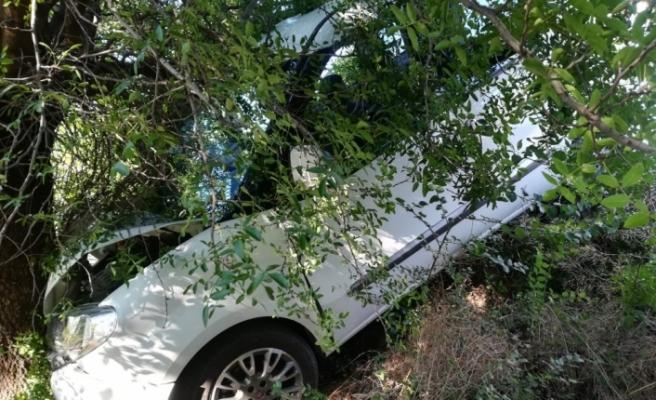 Otomobil ağaca çarptı! 1 yaralı