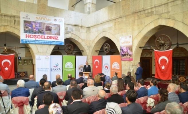 'Kırmızı Altın Safran' projesinin tanıtımı yapıldı