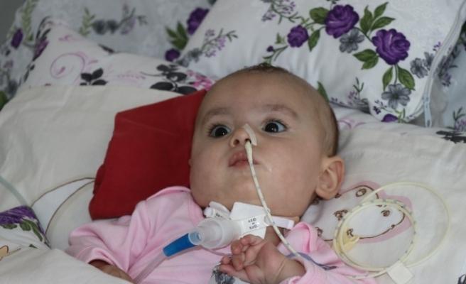 SMA hastası 8 aylık Hafsa Nur yardım eli bekliyor