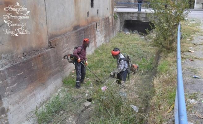 Karabük Belediyesi'nden dere temizliği
