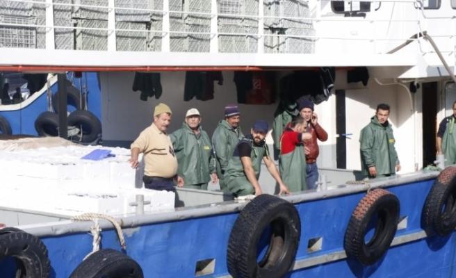 500 ton hamsi avlandı