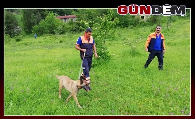 Kayıp şahıs K9 köpeğiyle aranıyor!..